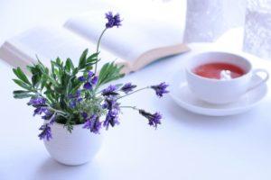 花粉症の診断と治療